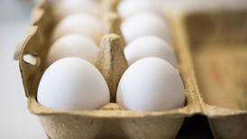 Krisemøte om gift i egg