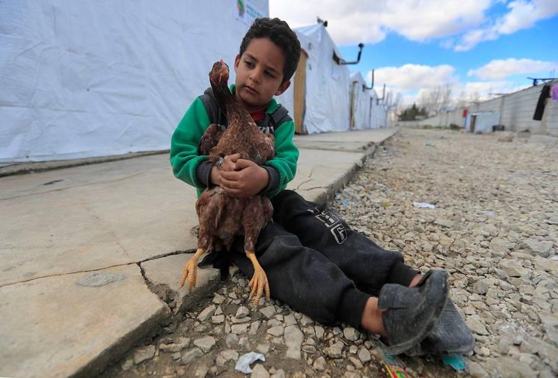 Bildet viser en gutt med en hane foran mange telt.