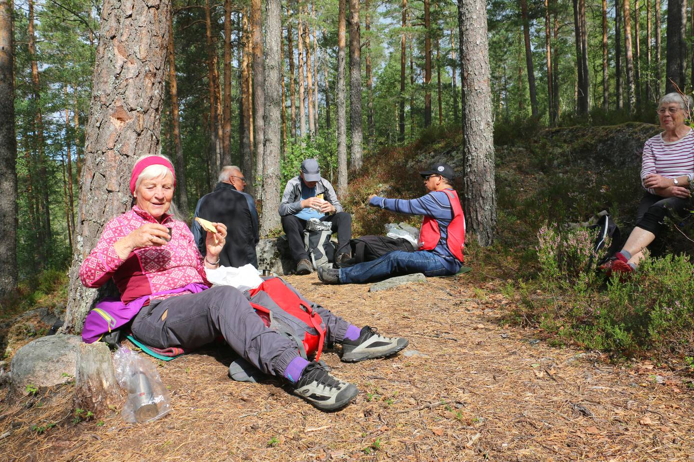 Bildet viser en gjeng som spiser lunsj i skogen.