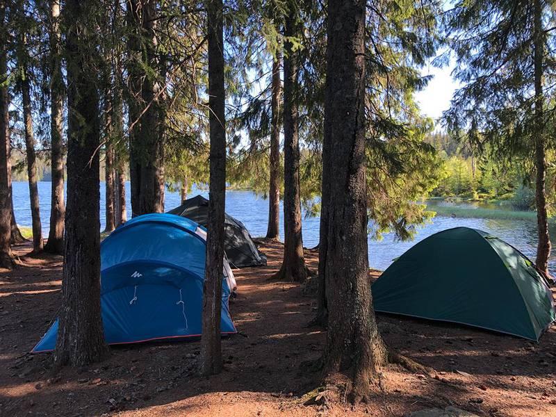 Bildet viser tre telt ved et vann. Overnatting i telt kan være en fin måte å oppleve den norske naturen. Noen ting kan gjøre turen tryggere og mer behagelig.