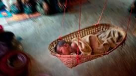 Babyer blir født til et farlig liv