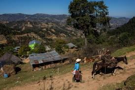 Stadig flere sulter i Mellom-Amerika