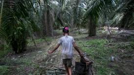 Sier at titusener av barn må jobbe med å lage palmeolje