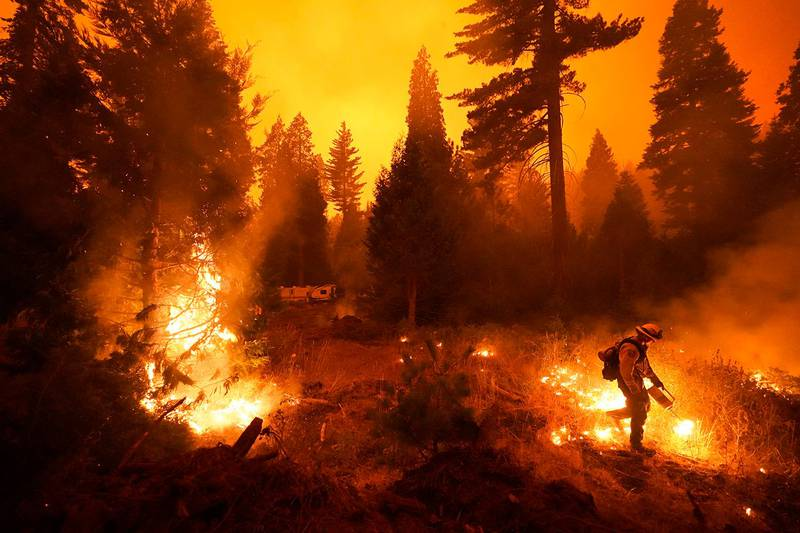 Firefighter Ricardo Gomez, of a San Benito Monterey Cal Fire crew, sets a controlled burn with a drip torch while fighting the Creek Fire, Sunday, Sept. 6, 2020, in Shaver Lake, Calif. (AP Photo/Marcio Jose Sanchez)