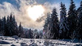 Rekordvarm februar i fem fylker