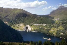Verdens største skilpadde funnet i Norge